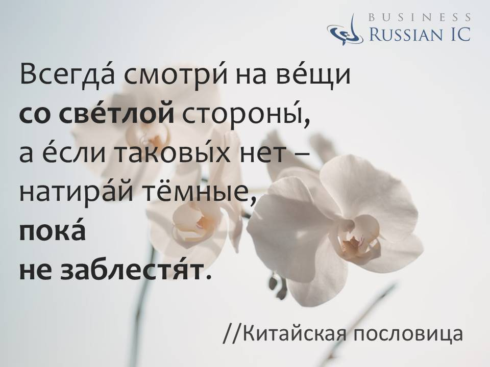 business Russian_aphorism_bright